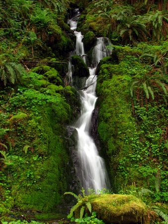 Waterfall in lush, green forest Stock Photo