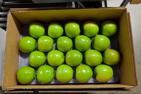 apples on a tray in a box photo