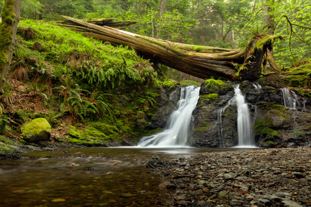 Rustic Falls on Orcas Island in the San Juan Islands, Washington state Stock Photo - 109404685