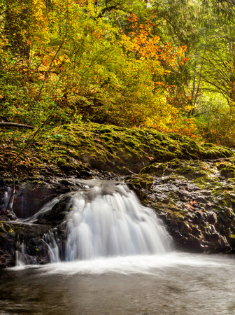 A small cascade flowing in Silver Falls State Park in autumn, Oregon, USA Banco de Imagens