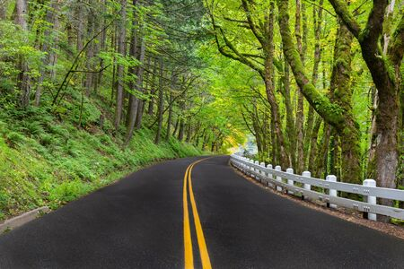 A winding road along the Columbia River Scenic Byway with the classic white fencing in Oregon, USA