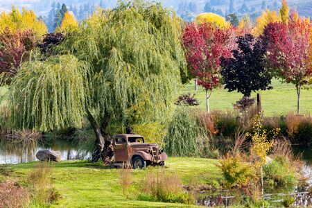 Vintage rusty 1938 GMC Truck sitting under a weeping willow tree near a pond with fall colors and hills in the background in Hood River, Oregon, USA