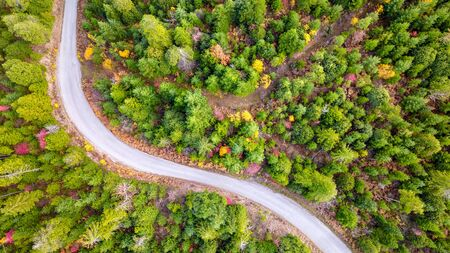 Aerial view of a winding road in the Pacific Northwest forest in autumn in Oregon Reklamní fotografie