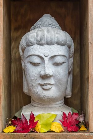 Buddhist statue with red and yellow fall leaves inside a wooden display box