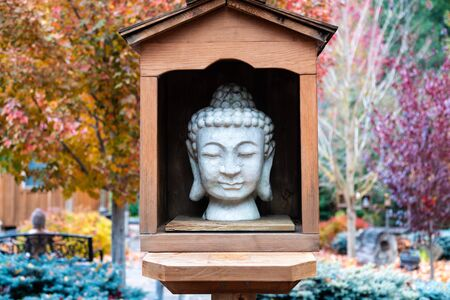 Buddha stone head in wooden display in an autumn garden with maple trees