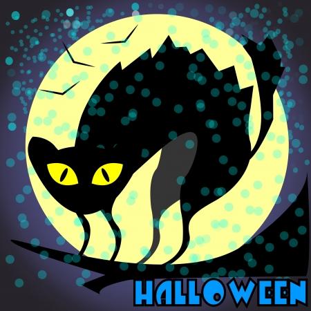 nigth: haunted cat in full moon