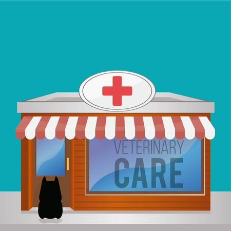 care: Veterinary Care Pets illustration over color background
