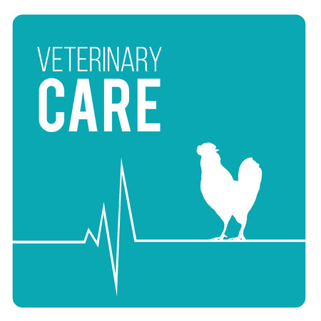 cat s: Veterinary Care Pets illustration over color background