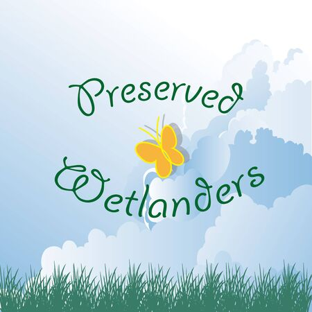 wetlands: Wetlands vector over clouds background