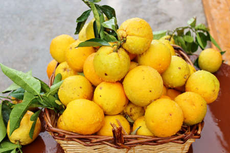 Oranges in a basket Stock Photo
