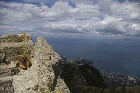 Mount Epomeo, view. Ischia, Italy