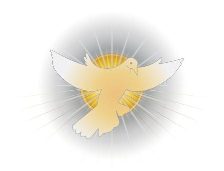 prima comunione: Spirito Santo Vettoriali
