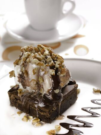 brownie dessert on a white plate with chocolate syrup and vanilla ice cream.pecans on the top.  photo