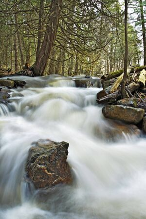 Beautiful cascade in the forest from Cap Tourmente Reserve Quebec Canada. Flowing water with stone.  photo