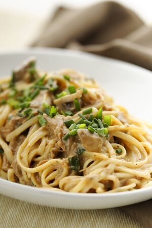 Pasta with mushroom sauce and duck meat. White plate with brown background.  Orientation : vertical Concept : food, healthy,cooking,mealtime.