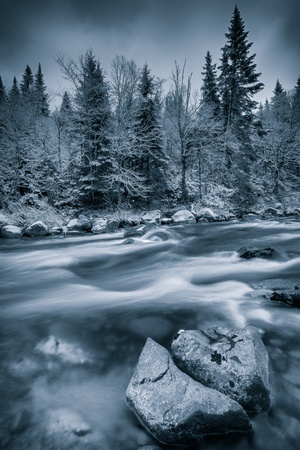 Black and white winter scene with tree,stones and a river. Dramatic blue tint to show the cold weather. Large depth of field. photo