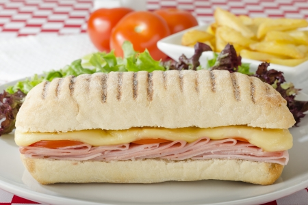 Ham   Cheese Toastie - Cheese, ham and tomato panini served with salad and chips on a red and white gingham background