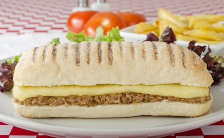 ciabatta: Tuna Melt - Cheese and tuna panini served with salad and chips on a red and white gingham background