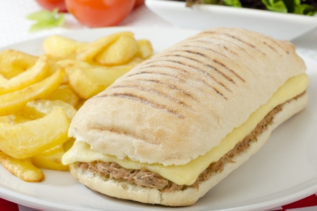 Tuna Melt - Cheese and tuna panini served with salad and chips  photo