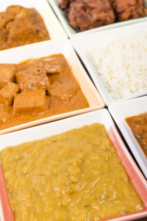 Thali - Indian meal set with vegetarian and meat curries - pork vindaloo, keema madras, tarka dal and paneer makhani  Stock Photo - 18036243