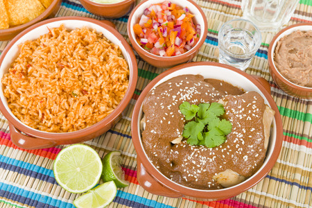 Mole Poblano - Chicken with mole sauce. Traditional Mexican food.  Image ID:241473418