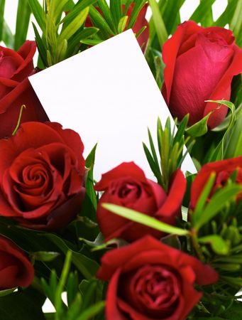 Red roses and a blank gift card. Stock Photo - 262037