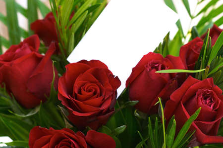 Red roses and a blank gift card.