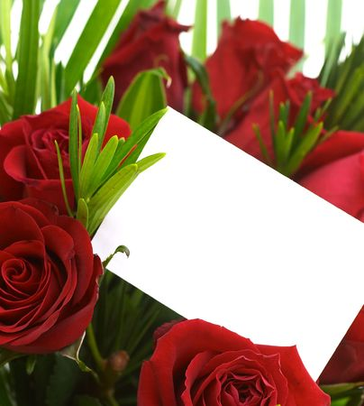 Red roses and a blank gift card. photo