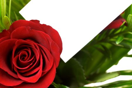 apology: Red roses and a blank gift card.