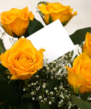 apology: A bouquet of yellow roses with a blank gift tag. Stock Photo