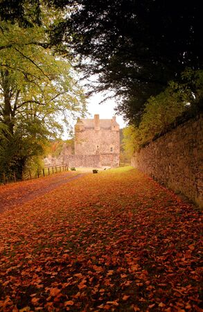 the carriageway: Autumn leaves carpet the carriageway to ancient Neidpath Castle, in Peebleshire, Scotland