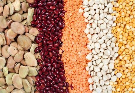 lentils: Varias semillas secadas de la legumbre: habas, habas rojas peque�as, lentejas amarillas, habas de los thermos y lentejas rojas.