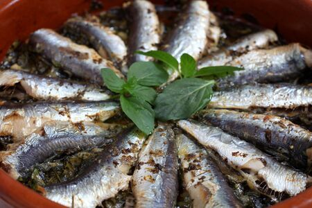 Fresh sardines baked with parsley, olive oil, oregano, pepper, salt and lemon juice in a terracotta bowl, topped with sprigs of mint photo