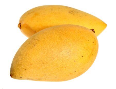 mango fruta: De dos mangos maduros de Tailandia sobre un fondo blanco Foto de archivo