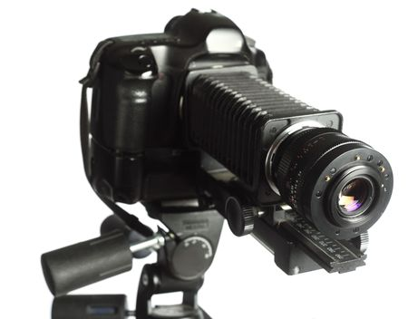 tripod mounted: A professional camera set up with a bellows and reversed prime lens, all mounted on a strong tripod. This is a standard set-up for extreme magnification.
