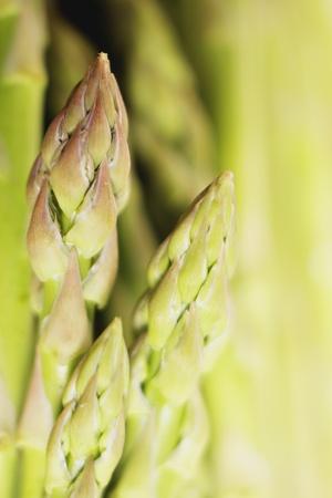 asperges: Extreme close-up van speren van asperges, ondiep DOF