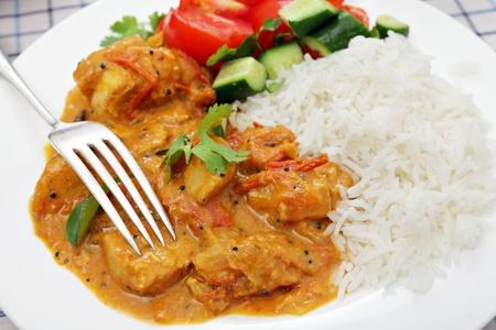 chicken curry: Ein oder s�dindischen Kerala Chicken Curry, die Tomaten und Kokosmilch mit coreander und Currybl�tter garniert umfasst, serviert mit Salat und Reis