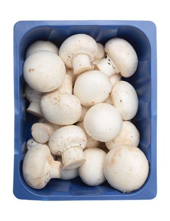 champignon: A supermarket punnet full of champignon mushrooms viewed from above