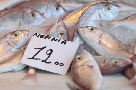 Fish, labelled Lithrinia, on sale in the fish-market at Aegina Town, on the island of Aegina in the Argo-Saronic gulf Stock Photo - 16925472