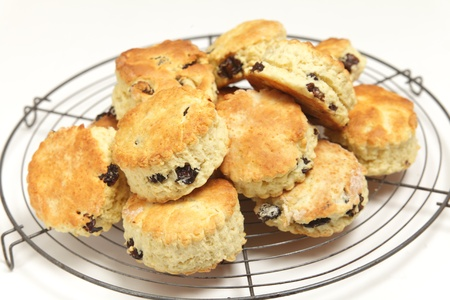 scone: English fruit scones on a cooling tray