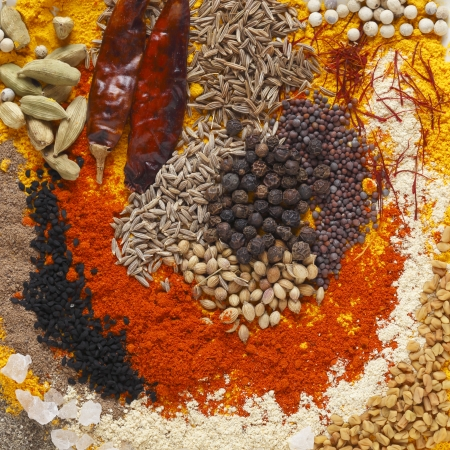 Asian curry spices, in the centre black pepper, coriander seeds, black mustard, cumin seeds, around that dried chillies, chilli powder, caraway seeds, saffron strands, white pepper  Round the outside are turmeric powder, fenugreek powder,fenungreek seeds, photo