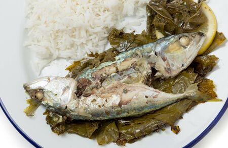 vine leaves: Mackerel baked in vine leaves, with olive oil, lemon and oregano, a traditional Greek dish with small mackerel or sardines, served with rice