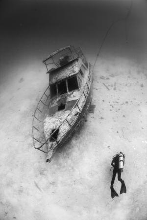 padi: bohol boat wreck