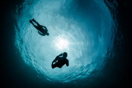 snells snorkellers photo