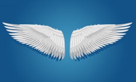 고립 된: 파란색 배경에 날개를