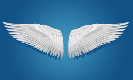 Wings on blue background Vector