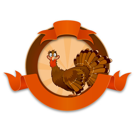 funny turkey: Thanksgiving turkey cartoon character