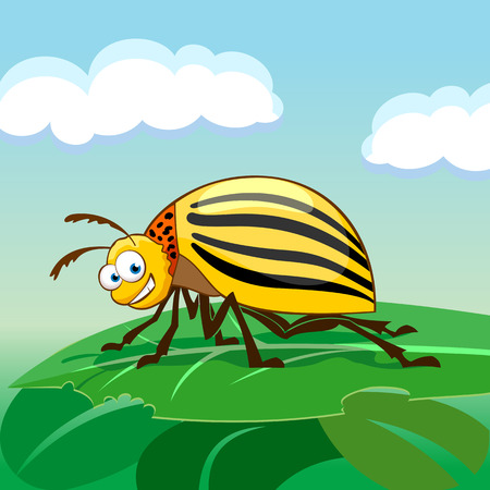 Cartoon colorado potato beetle eating leaf