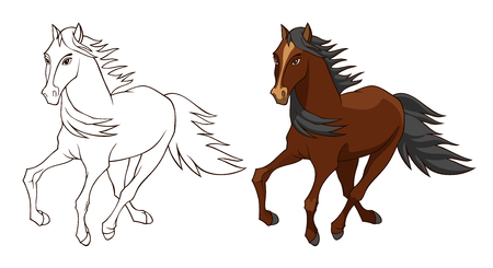 Horse illustration isolated on white in color and black and white version