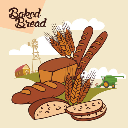 Baked bread from farm to table, advertising illustration with label Vector